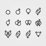 Varón del vector e iconos femeninos de la orientación sexual Foto de archivo libre de regalías