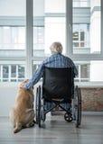 Varón discapacitado mayor que abraza el perro en sitio imagenes de archivo