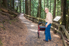Varón mayor activo que camina con el caminante en sendero adentro Foto de archivo libre de regalías