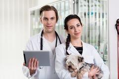 Varón y veterinario de sexo femenino que sostienen la tableta digital fotos de archivo libres de regalías