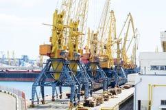var den kranar anslutade laddade klara shipen för port till Fotografering för Bildbyråer