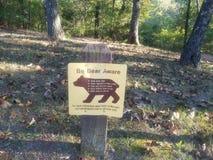 Var den medvetna björnen royaltyfria foton