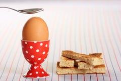 var det kokade spruckna ägget som är öppet till arkivfoto