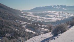 var färdigt lycklig hör I, om bildberg tackar använt var vintern skulle dig Snö-täckte träd för vinter skog i bergen blå sky stock video