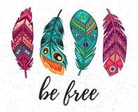 Var fri Vektorkort med etniska dekorativa fjädrar Arkivbilder