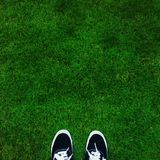 Var jag står: grönt fält Royaltyfri Fotografi