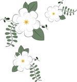 var kan corner olika blom- använda illustrationavsikter Royaltyfri Bild