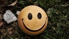 Var lycklig Arkivfoton