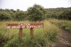 Var medveten av buffeltecken Royaltyfri Bild