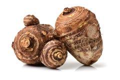 var redan kan lagade mat olika berömda matar för århundraden porslinet som guangxien har historia många närande planterad produce arkivbilder