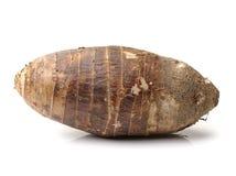 var redan kan lagade mat olika berömda matar för århundraden porslinet som guangxien har historia många närande planterad produce fotografering för bildbyråer