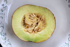 Var van Cucumismelo cantalupensis, H ogen Royalty-vrije Stock Foto