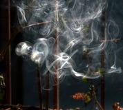 Vara da fragrância Fotos de Stock