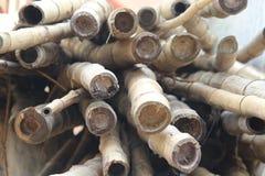 Vara de bambu, grupo das varas de bambu, imagem de stock royalty free