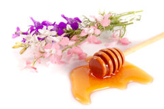 Vara do mel com mel e os wildflowers de fluxo no fundo branco Foto de Stock