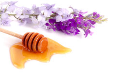 Vara do mel com o mel e os wildflowers de fluxo isolados no fundo branco Fotografia de Stock