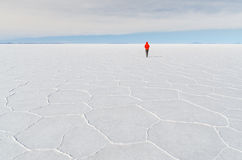 Vara ensamt på salta lägenheter för bolivian Royaltyfria Foton