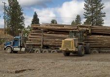 vara lastad av loggad lastbil royaltyfri foto