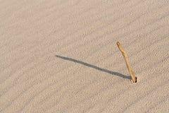 Vara na areia Imagens de Stock