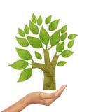 Vara recicl árvore do ofício de papel Fotos de Stock