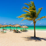 Varadero beach in Cuba with a coconut tree. View of Varadero beach in Cuba with a coconut tree, umbrellas and a beautiful turquoise ocean Stock Photography