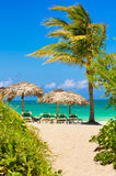 Varadero beach in Cuba with a coconut tree. View of Varadero beach in Cuba with a coconut tree, umbrellas and beach beds Stock Photos