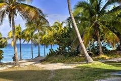 Varadero beach in Cuba Royalty Free Stock Images