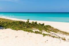 Varadero beach stock image