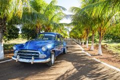 Varadero, Cuba, American blue classic car on alley with green palms, free space for text stock images