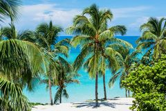 Varadero Cuba and the beach royalty free stock photography