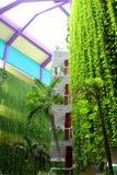 Varadero, Cuba, le 1er janvier 2014 : Hôtel avec accrocher les plantes vertes Photographie stock libre de droits