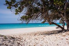 Path to Varadero Beach Royalty Free Stock Photo