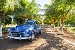 Varadero, Cuba, voiture classique bleue américaine sur l'allée avec les paumes vertes, l'espace libre pour le texte images stock