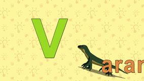 Varan. English ZOO Alphabet - letter V stock video footage