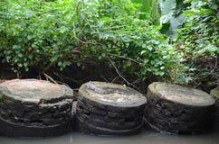 Varan sur une plate-forme ronde de brique Berge Image libre de droits