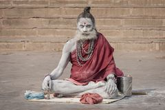 Portrait of Shaiva sadhu, holy man on the ghats of the Ganges river in Varanasi, India . Close up. VARANASI, INDIA - DECEMBER 01, 2012 : Portrait of Shaiva sadhu stock images