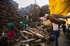 Locals near Holy Ganges weighed for sale wood for cremation. VARANASI, INDIA - MAR 22, 2018: Locals near Holy Ganges weighed for sale wood for cremation royalty free stock image