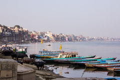 Varanasi, river bank and ghats. The bank of the river Ganges with the old city of Varanasi and the ghats Royalty Free Stock Images