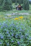 20 2006 varar spökskrivareare den utgångspunkter bebodde inte pripyattownen som gårdår Royaltyfri Fotografi