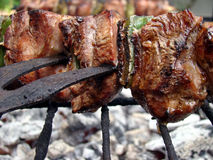 Varas da carne imagem de stock royalty free