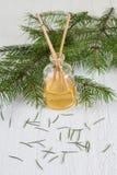Varas da fragrância ou difusor conífero do perfume Fotografia de Stock Royalty Free