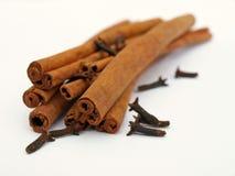 Varas de canela com cravos-da-índia Foto de Stock Royalty Free