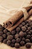 Varas de canela com pimenta da Jamaica (pimenta de Jamaica) Imagem de Stock