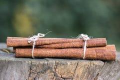 Varas de canela cruas frescas no coto de madeira, varas amarradas com duas guitas naturais da juta Foto de Stock Royalty Free