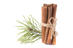 Varas de canela e árvore de Natal Imagem de Stock Royalty Free