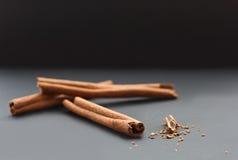 Varas de canela e canela à terra Imagens de Stock Royalty Free