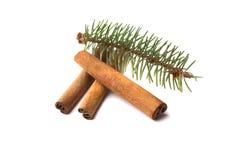 Varas de canela e ramo do pinho Imagem de Stock