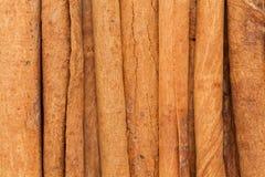 Varas de canela orgânicas (verum da canela) Fotos de Stock Royalty Free