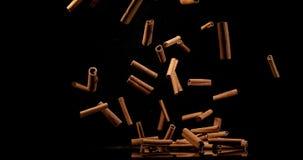 Varas de canela, zeylanicum da canela, especiaria que cai contra o fundo preto, movimento lento filme