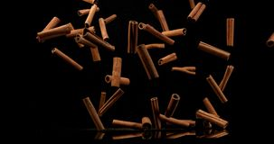 Varas de canela, zeylanicum da canela, especiaria que cai contra o fundo preto, movimento lento vídeos de arquivo